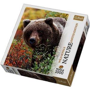 puzzle z niedźwiedziem grizzly